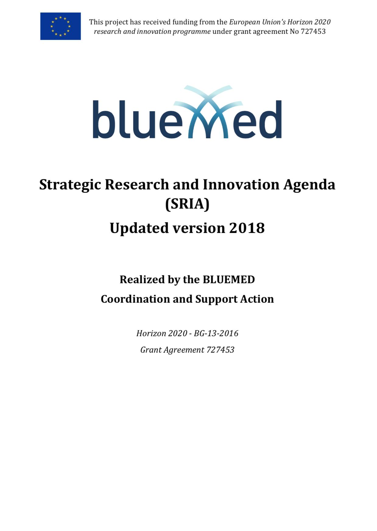 BM SRIA 2018 - cover