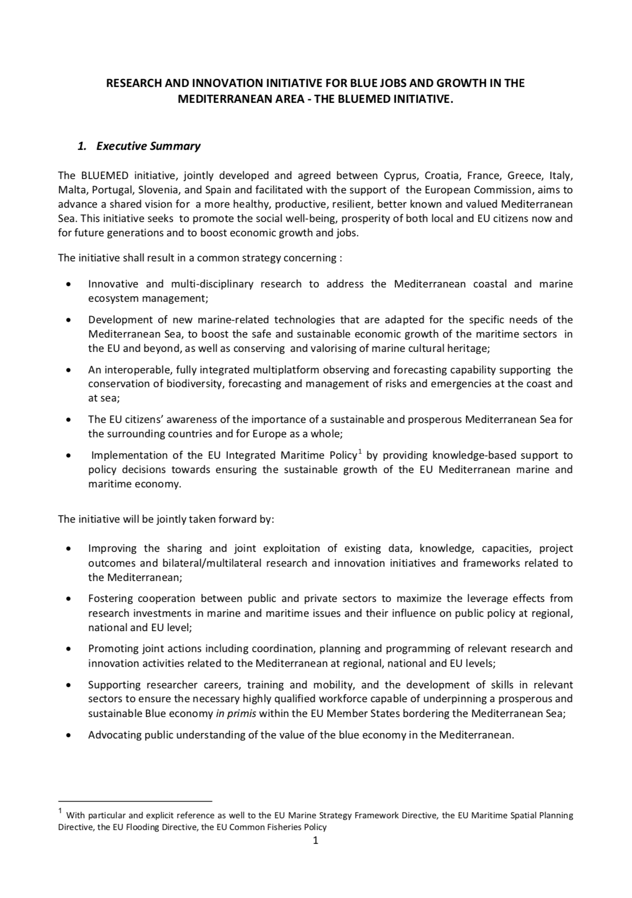Bluemed Vision Document 5th December 2014