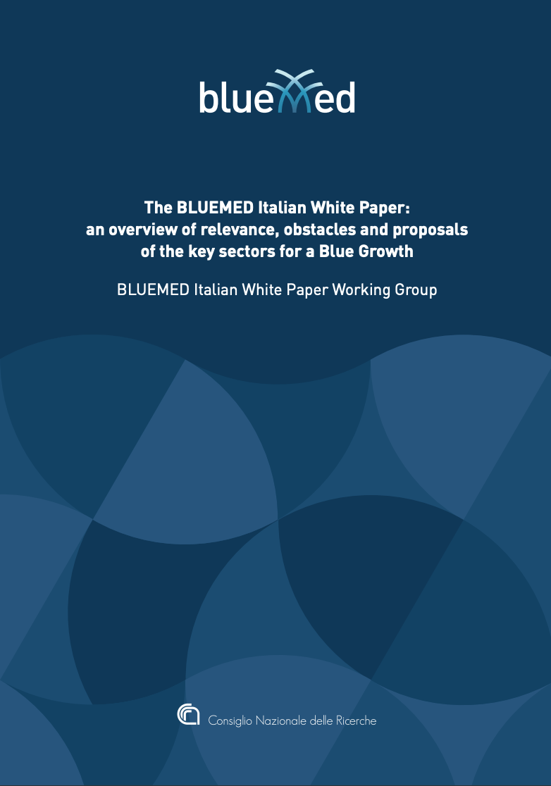 The BlueMed Italian White Paper: an overview of relevance, obstacles and proposals of the key sectors for a Blue Growth January 2019