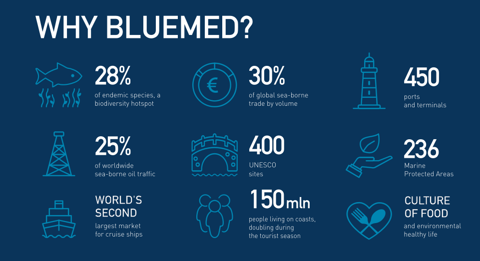 Why BlueMed? Infographics