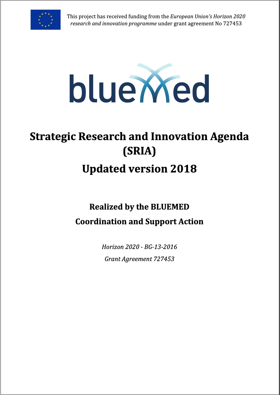 Strategic Research and Innovation Agenda